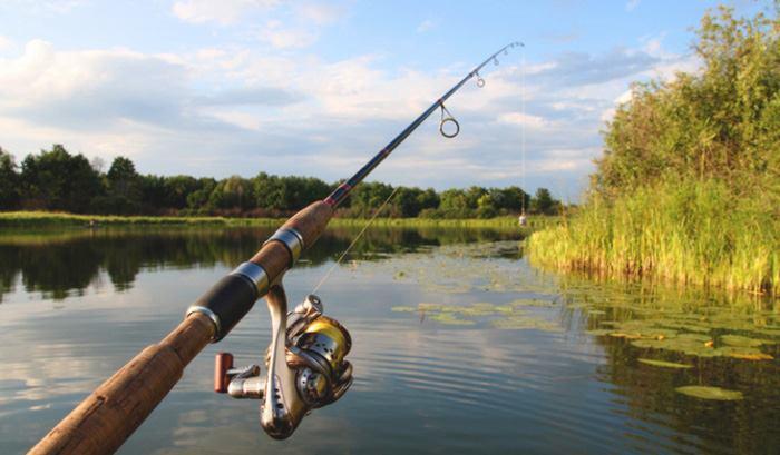 انتخاب چوب ماهیگیری خوب