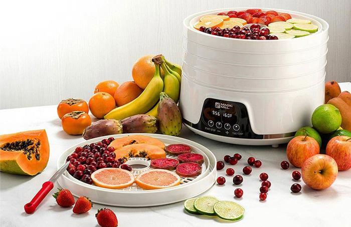 بهترین مدل های دستگاه میوه خشک کن