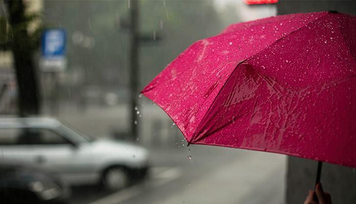 راهنمای خرید چتر بارانی
