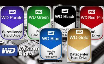 بررسی علت تفاوت رنگ بندی هاردهای وسترن دیجیتال و معنی آنها