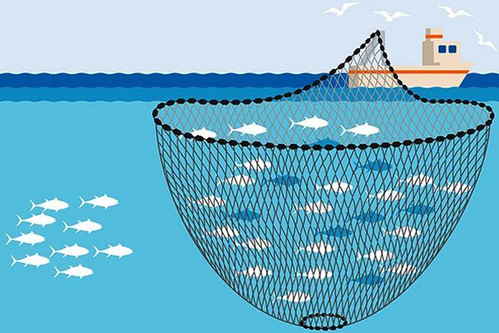 تور ماهیگیری کیسه ای
