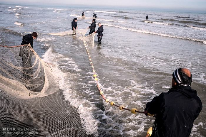 تور ماهیگیری ساحلی