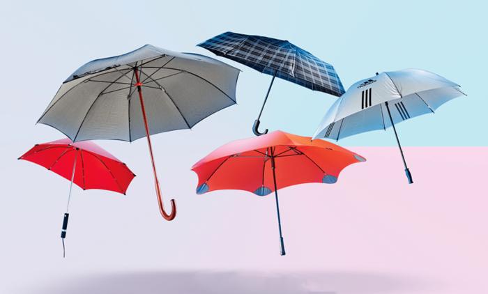 انواع مختلف چتر